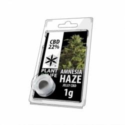 Amnésia Haze CBD Jelly 22%...