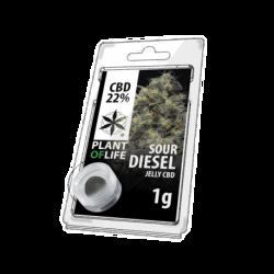 Sour Diesel CBD Jelly 22%...