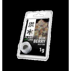 Blueberry CBD Jelly 22%...