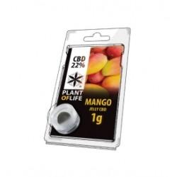 Mango Fruit CBD Jelly 22%...